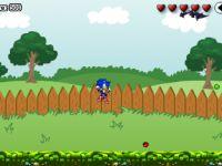 Sonic im Garten